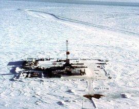 Psychic Predict Arctic Oil